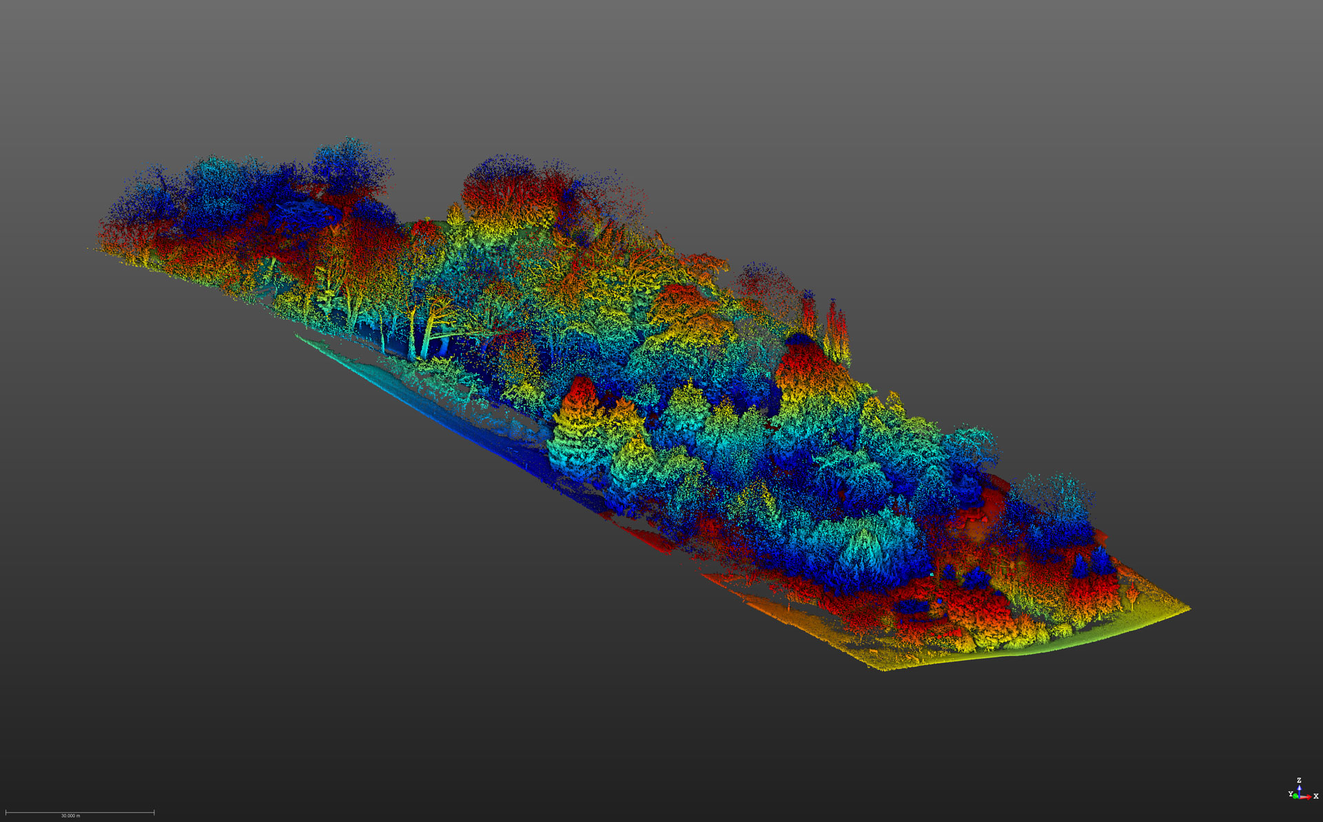 Laser Scanning Woodland Survey | LiDAR Survey